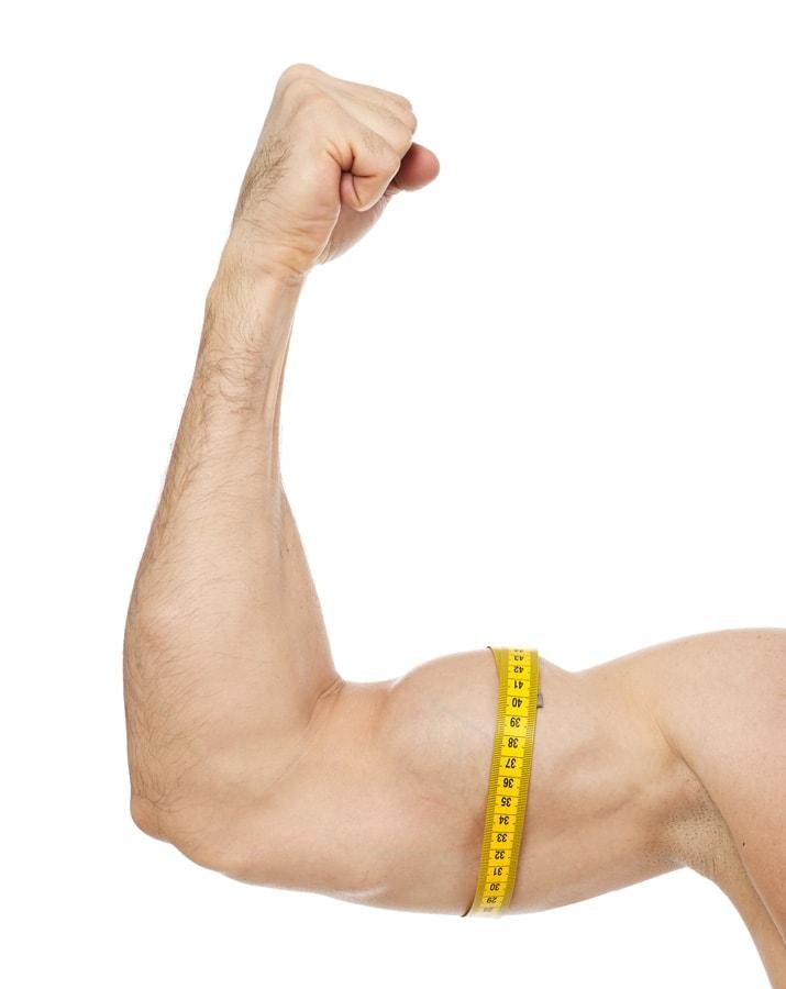 questi esercizi possono aumentare la massa muscolare