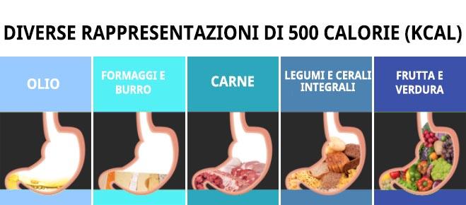 diverse rappresentazioni di 500 calorie