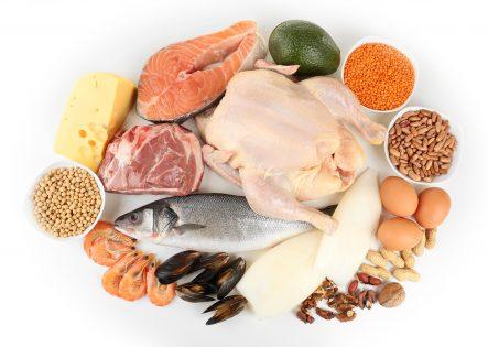 alimenti ad alto contenuto proteico