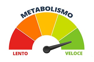 metabolizem