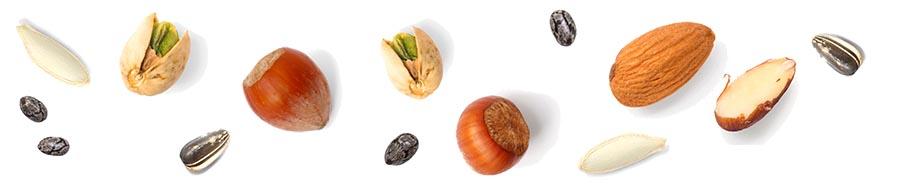 frutta a guscio e semi